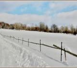 zima11