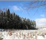 zima36